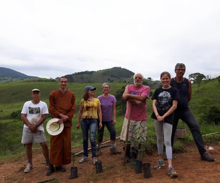 Primeira plantação de árvores do mosteiro